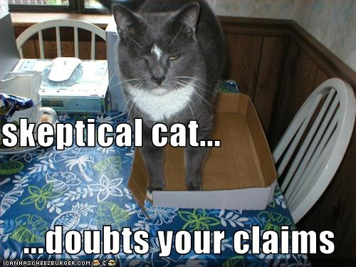 skeptical_cat_2